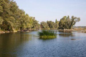 Agence de l'eau - plus2sens - état des eaux